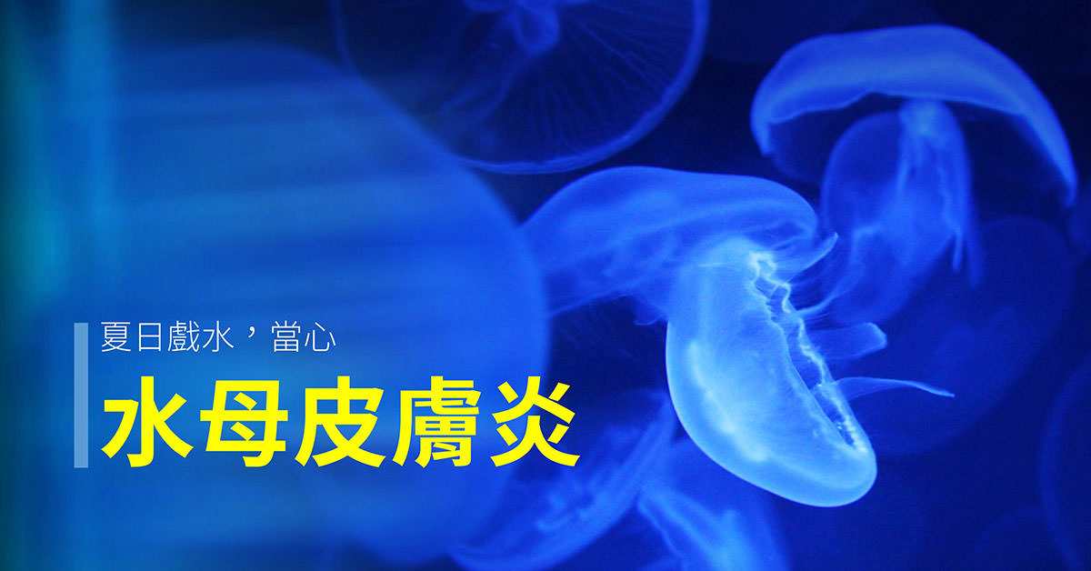 jellyfish_dermatitis, 水母皮膚炎